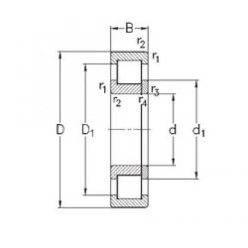 70 mm x 150 mm x 51 mm  NKE NUP2314-E-MA6 roulements à rouleaux cylindriques