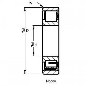 AST N317 EMB roulements à rouleaux cylindriques