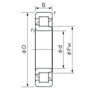 120 mm x 260 mm x 55 mm  NACHI NJ 324 roulements à rouleaux cylindriques