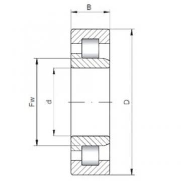 27,5 mm x 55 mm x 17 mm  INA 712113810 roulements à rouleaux cylindriques