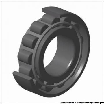 65 mm x 100 mm x 18 mm  NSK N1013RSTPKR roulements à rouleaux cylindriques