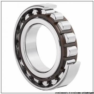 120,000 mm x 260,000 mm x 110,000 mm  NTN NJ324EDF roulements à rouleaux cylindriques