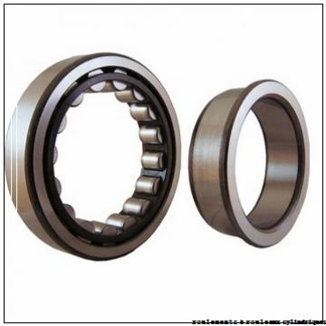 250 mm x 460 mm x 76 mm  Timken 250RJ02 roulements à rouleaux cylindriques