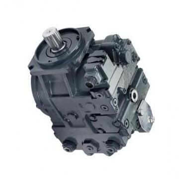 YUKEN PV2R2-47-F-RAB-4222 PV2R Single pompe à palettes