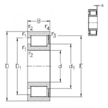 200 mm x 310 mm x 82 mm  NKE NCF3040-V roulements à rouleaux cylindriques