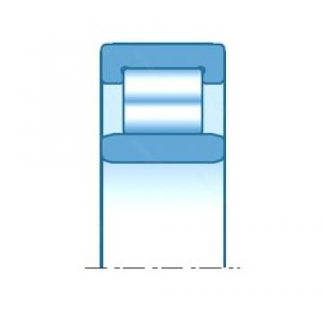 800,000 mm x 1150,000 mm x 155,000 mm  NTN NU10/800 roulements à rouleaux cylindriques